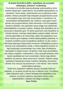 polsko_web