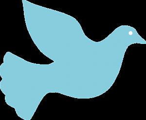 dove-157701_960_720